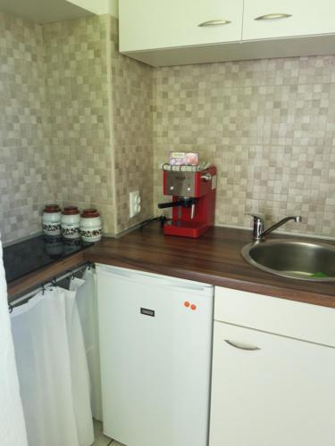 A kitchen or kitchenette at Rooms and Apartment Stambuk