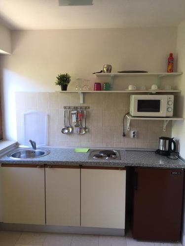 A kitchen or kitchenette at Apartments Lada