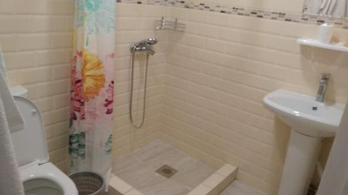 Ванная комната в Мини-отель Пестелия