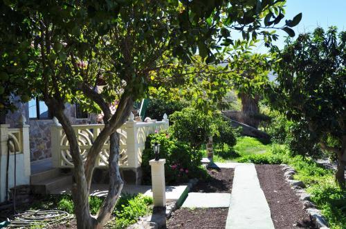 A garden outside Finca Tomás y Puri