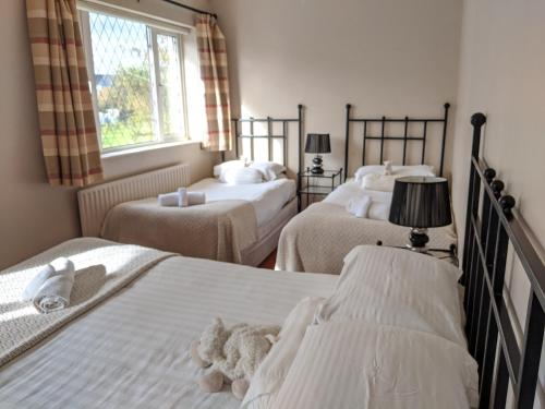 A bed or beds in a room at Adare Guesthouse
