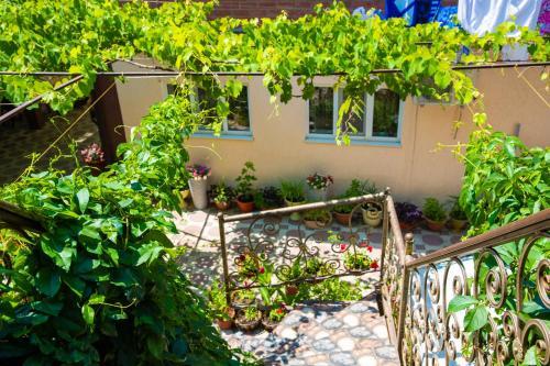 A balcony or terrace at Alenka