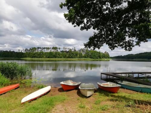 Widok na jezioro w pobliżu tego ośrodka wypoczynkowego
