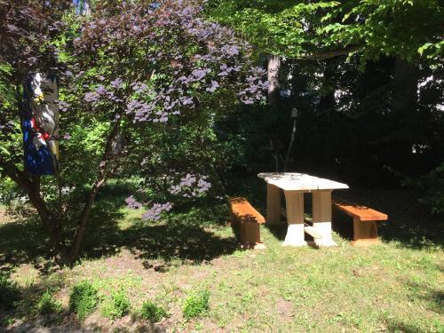 A garden outside Youth Hostel Proteus Postojna