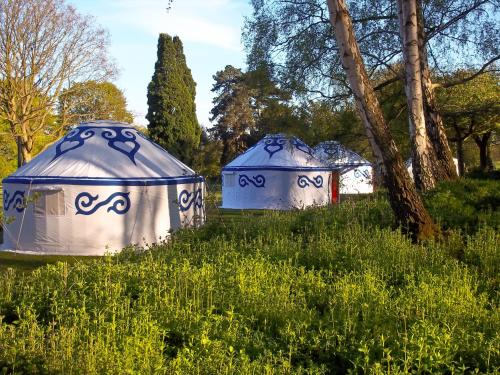 Plush Tents Pop Up Yurts Findon