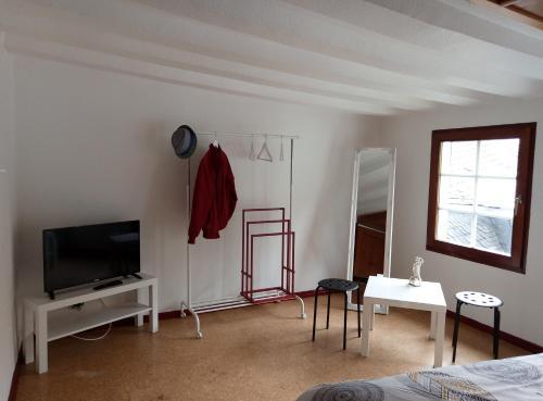 TV/Unterhaltungsangebot in der Unterkunft Haus am Oberen Mühlenberg