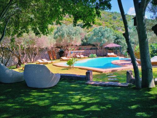 The swimming pool at or near Castell de la Solana