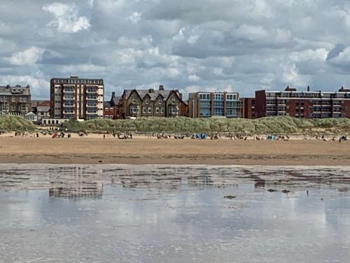 Beach Shore - SEA VIEWS