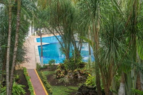 A view of the pool at Capital Plaza Hotel or nearby