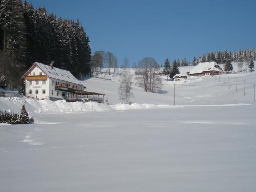 Gasthaus Pension Donishäusle im Winter