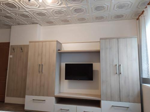 TV a/nebo společenská místnost v ubytování Apartmány Okoun