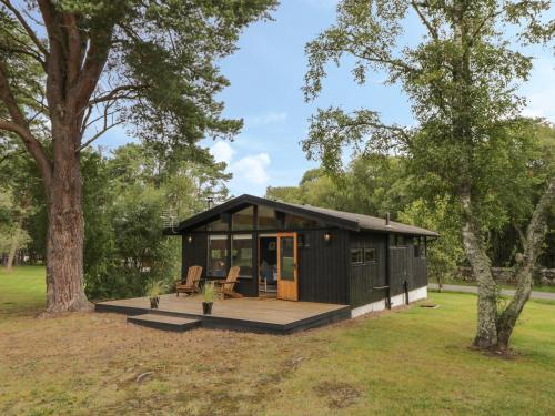 Blue Pine Lodge