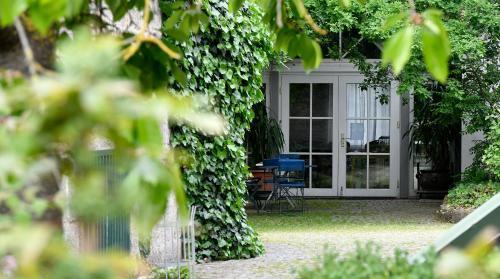 Ein Patio oder anderer Außenbereich in der Unterkunft Hotel Schwarzes Ross
