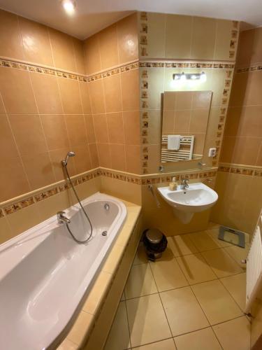 Ванная комната в Penzion Le Monde