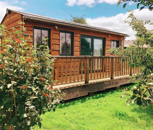 The Holford Arms Chalets and Glamping