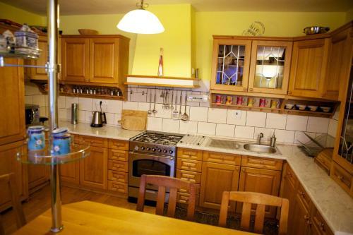 Kuchyň nebo kuchyňský kout v ubytování Penzion u Laca