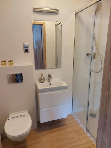 A bathroom at Apartamenty Willa Atena