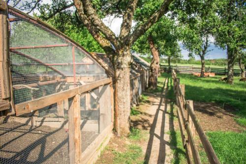 Vonkajšia záhrada v ubytovaní Ubytovanie V Súkromí Samuel