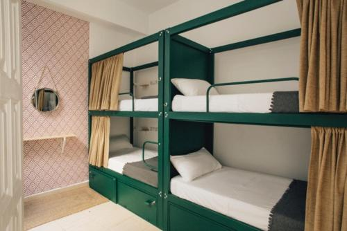 A bunk bed or bunk beds in a room at The Urban Jungle Hostel