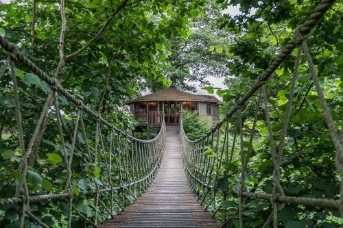 Bensfield Treehouse