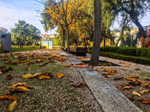 A garden outside Hotel Santa Margarida