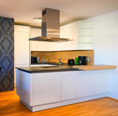 Kuchyň nebo kuchyňský kout v ubytování Modern Duplex Museumsquartier