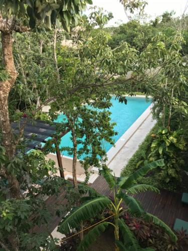 A view of the pool at Hotel Panacea Tulum or nearby