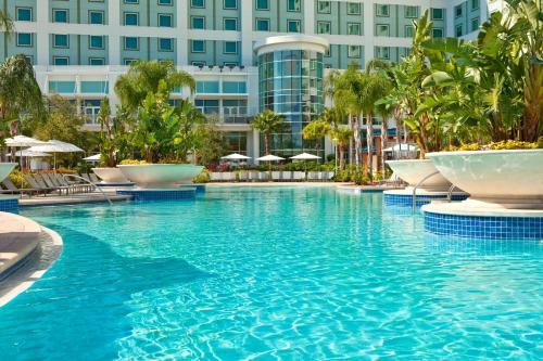 The swimming pool at or near Hilton Orlando