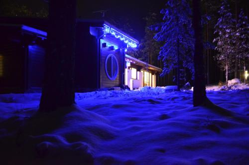 Villa DeLuxe Savonlinna зимой