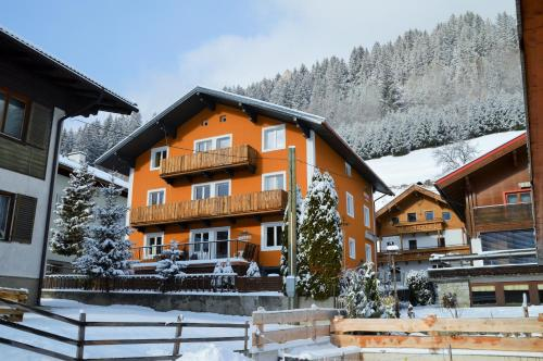 Aparthotel Pinzgau im Winter