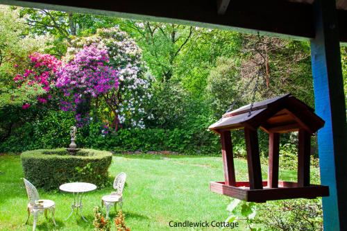 A garden outside Observatory Cottages