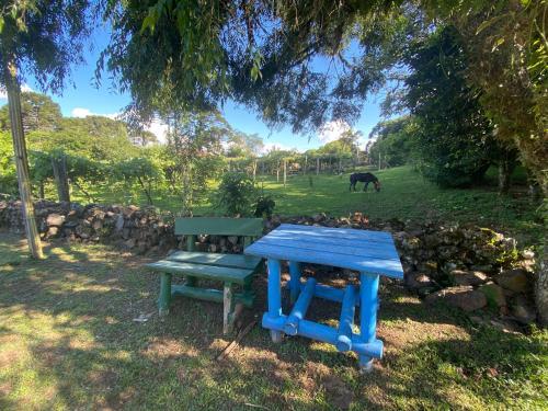 A garden outside Cabanas Brocker