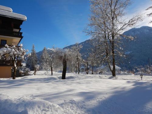Ferienwohnungen Forellenhof Waldner im Winter