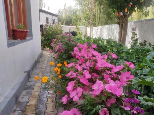 A garden outside Achina