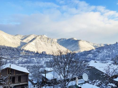 Akaki's Guesthouse during the winter