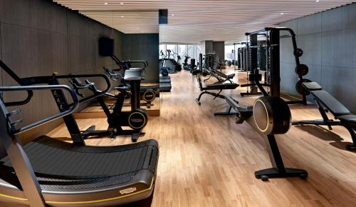 The fitness centre and/or fitness facilities at Sofitel Dubai The Obelisk