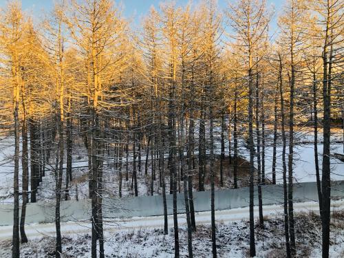 Rodina DeLuxe зимой