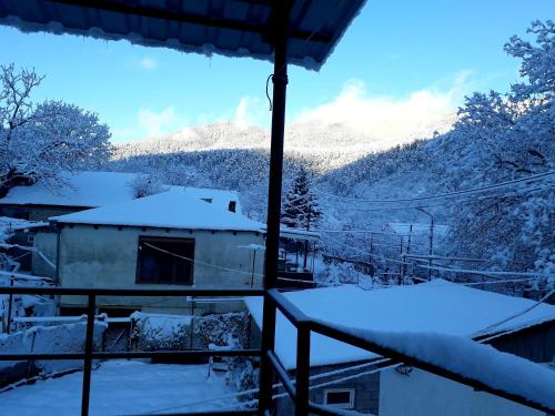 Guest House Metreveli during the winter