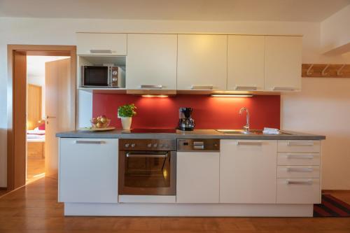 A kitchen or kitchenette at Nassfeldhaus