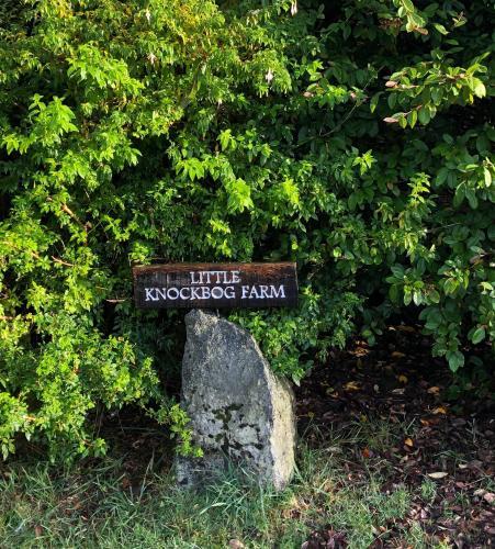 Little Knockbog Farm