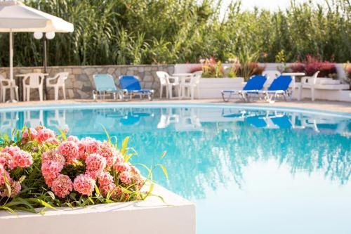 The swimming pool at or near Albatros Hotel