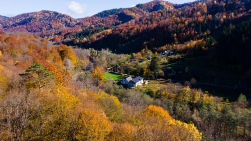 A bird's-eye view of The Little Basca Villa