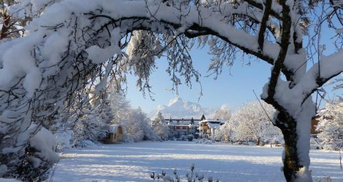 Gasthof Hotel Doktorwirt during the winter