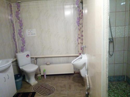 A bathroom at Guesthouse V Sosnovom Boru