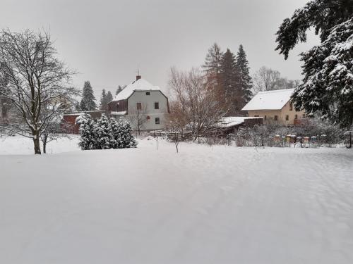Do zahrady v zimě