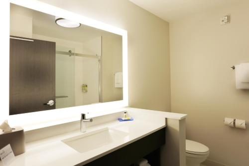 A bathroom at Holiday Inn Express - Oneonta, an IHG hotel