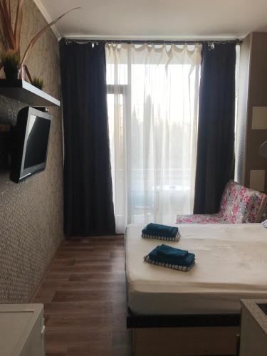 Телевизор и/или развлекательный центр в Апарт-отель Светлана