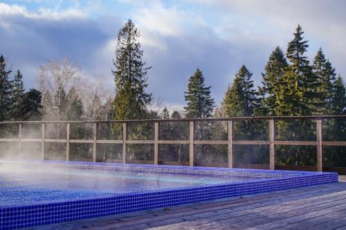 The swimming pool at or close to Русские Сезоны Апарт Отель Пересвет