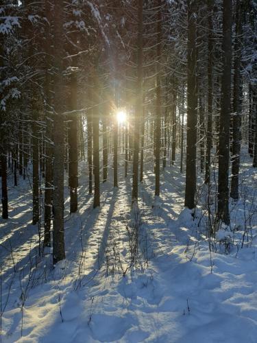 Obiekt Spichlerz zimą