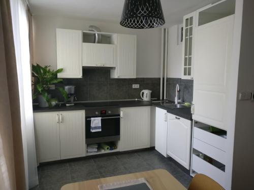 A kitchen or kitchenette at Invalidovna Apartment